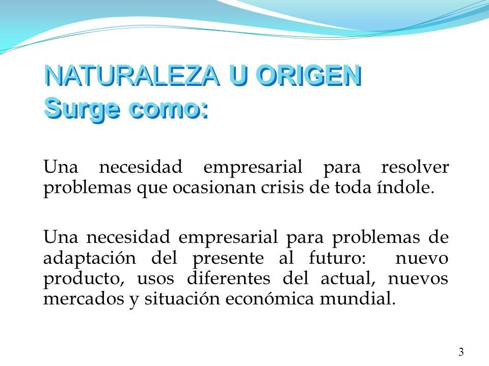 NATURALEZA U ORIGEN Surge como: Una necesidad empresarial para resolver problemas que ocasionan crisis de toda índole. Una necesidad empresarial para