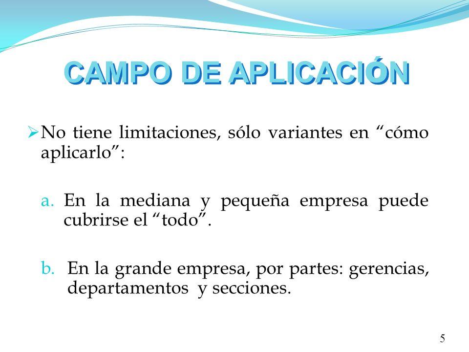 CAMPO DE APLICACI Ó N No tiene limitaciones, sólo variantes en cómo aplicarlo: a.En la mediana y pequeña empresa puede cubrirse el todo. b.En la grand