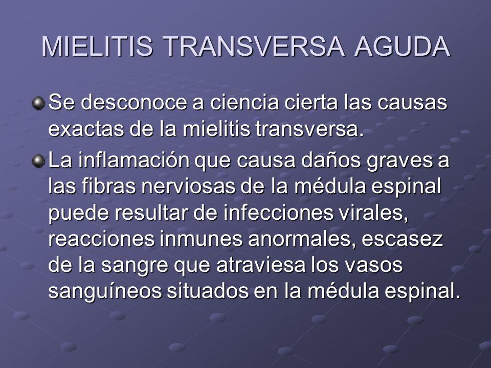 MIELITIS TRANSVERSA AGUDA Se desconoce a ciencia cierta las causas exactas de la mielitis transversa. La inflamación que causa daños graves a las fibr