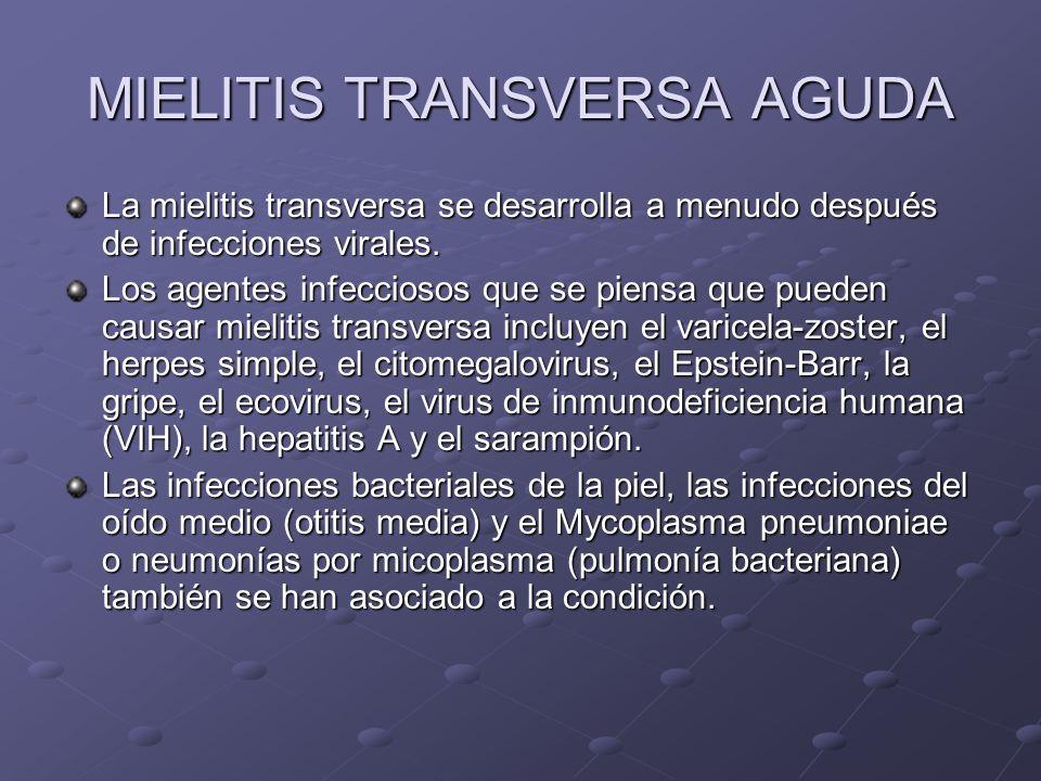 MIELITIS TRANSVERSA AGUDA La mielitis transversa se desarrolla a menudo después de infecciones virales. Los agentes infecciosos que se piensa que pued