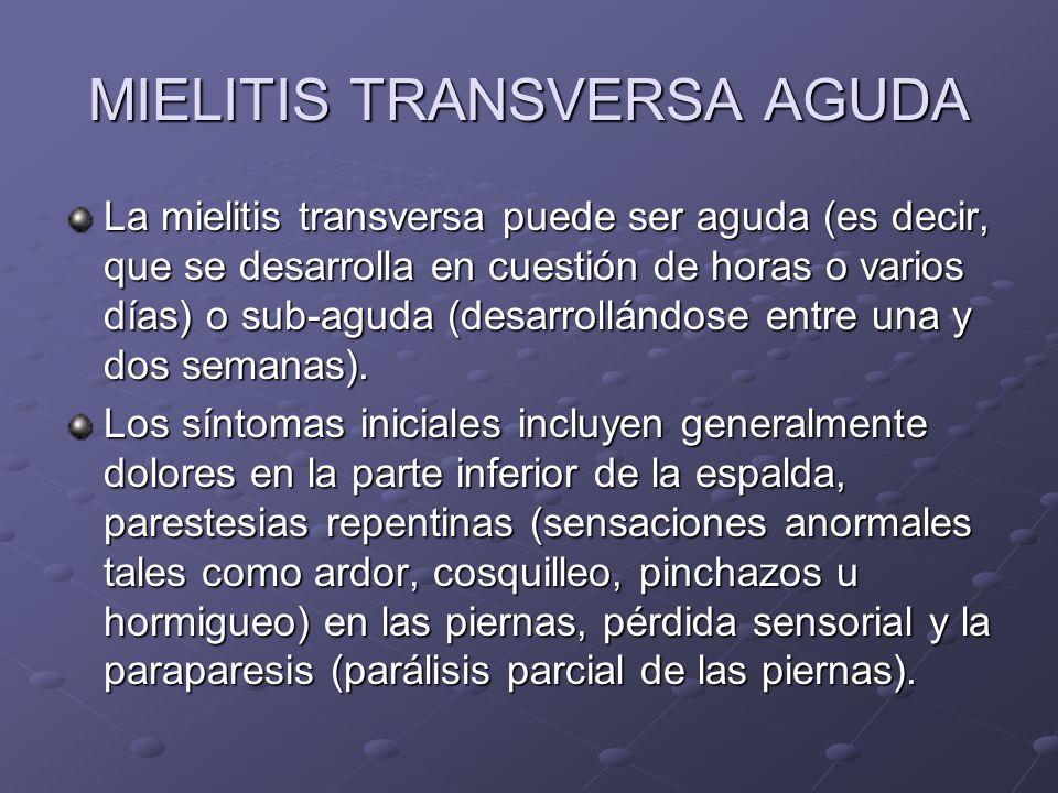MIELITIS TRANSVERSA AGUDA La mielitis transversa puede ser aguda (es decir, que se desarrolla en cuestión de horas o varios días) o sub-aguda (desarro