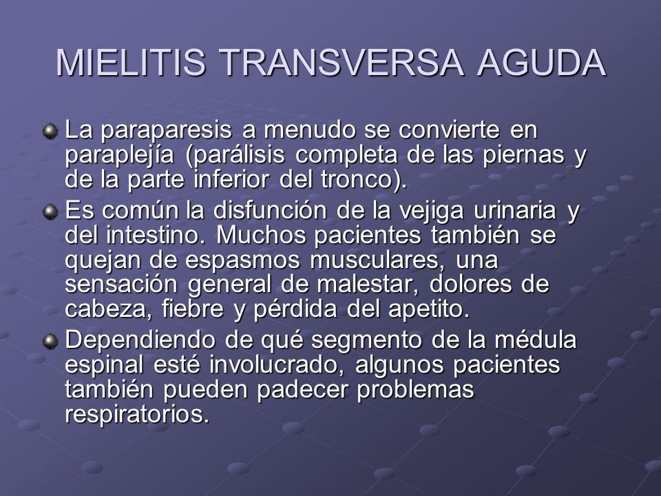 MIELITIS TRANSVERSA AGUDA La paraparesis a menudo se convierte en paraplejía (parálisis completa de las piernas y de la parte inferior del tronco). Es