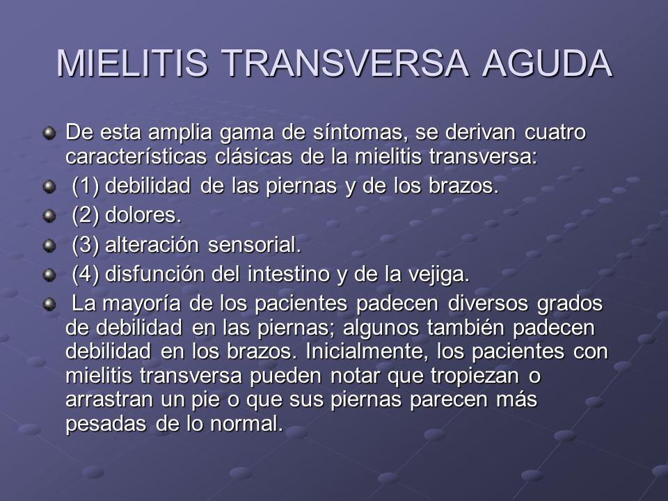 MIELITIS TRANSVERSA AGUDA De esta amplia gama de síntomas, se derivan cuatro características clásicas de la mielitis transversa: (1) debilidad de las