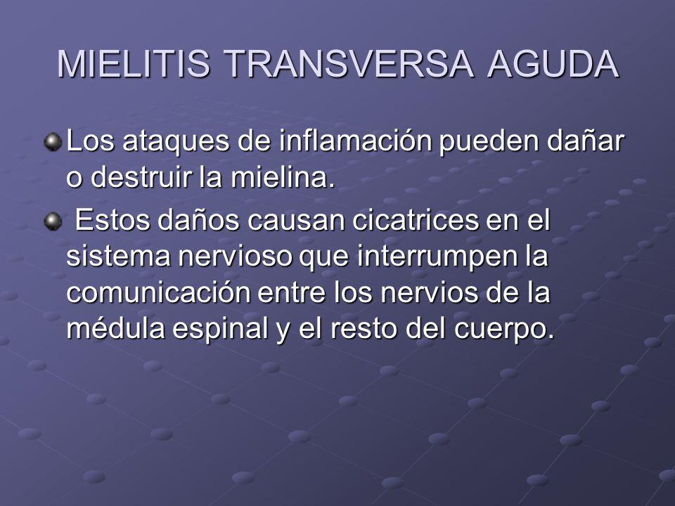 MIELITIS TRANSVERSA AGUDA Los ataques de inflamación pueden dañar o destruir la mielina. Estos daños causan cicatrices en el sistema nervioso que inte