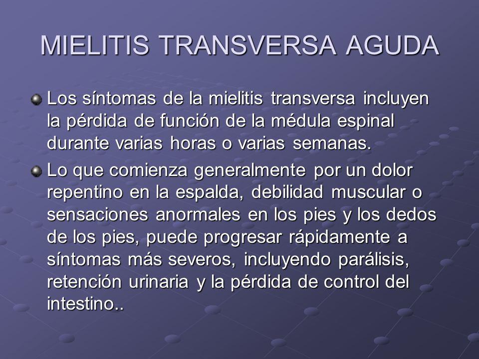 MIELITIS TRANSVERSA AGUDA Los síntomas de la mielitis transversa incluyen la pérdida de función de la médula espinal durante varias horas o varias sem