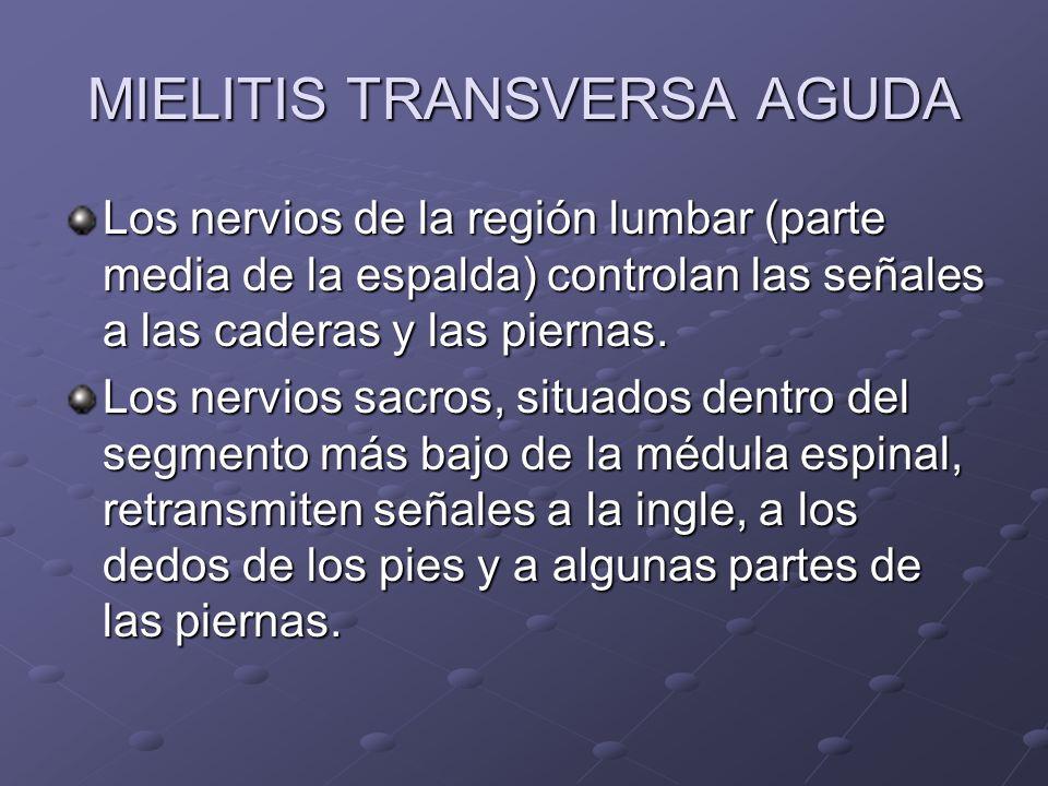 MIELITIS TRANSVERSA AGUDA Los nervios de la región lumbar (parte media de la espalda) controlan las señales a las caderas y las piernas. Los nervios s