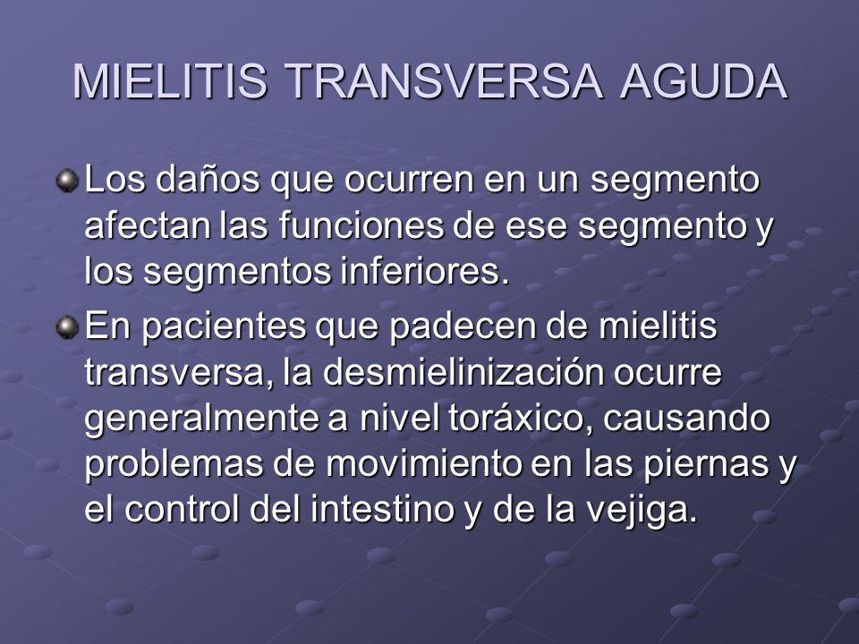 MIELITIS TRANSVERSA AGUDA Los daños que ocurren en un segmento afectan las funciones de ese segmento y los segmentos inferiores. En pacientes que pade