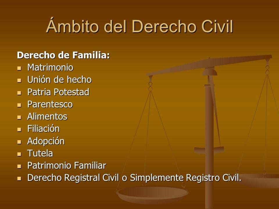 Ámbito del Derecho Civil Derecho de Familia: Matrimonio Matrimonio Unión de hecho Unión de hecho Patria Potestad Patria Potestad Parentesco Parentesco