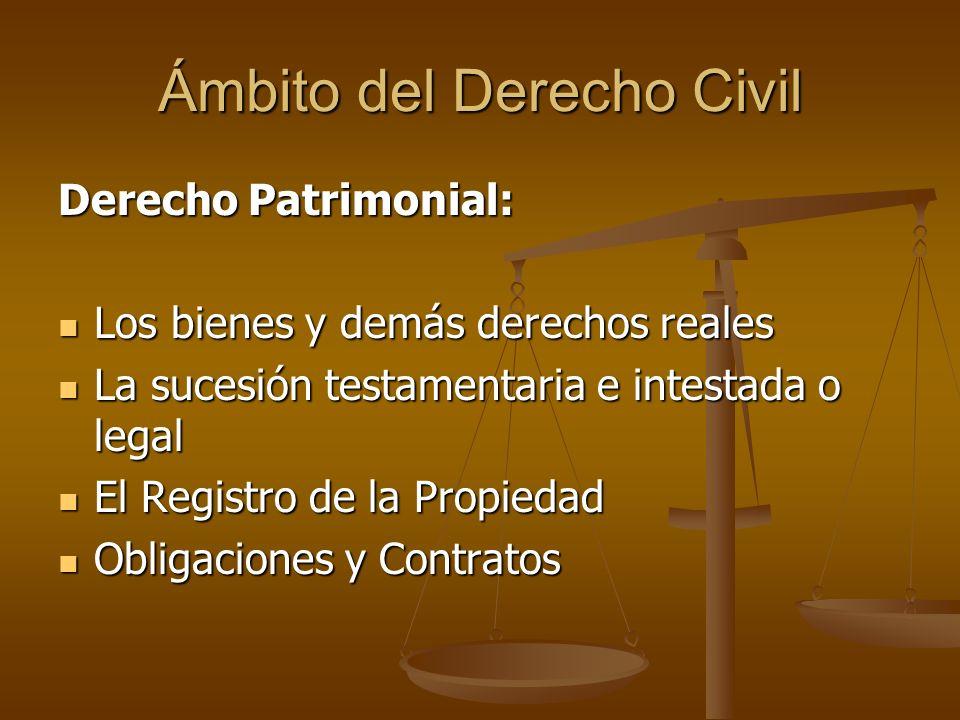 Ámbito del Derecho Civil Derecho Patrimonial: Los bienes y demás derechos reales Los bienes y demás derechos reales La sucesión testamentaria e intest
