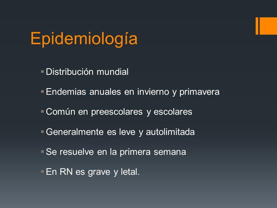 Epidemiología Distribución mundial Endemias anuales en invierno y primavera Común en preescolares y escolares Generalmente es leve y autolimitada Se r