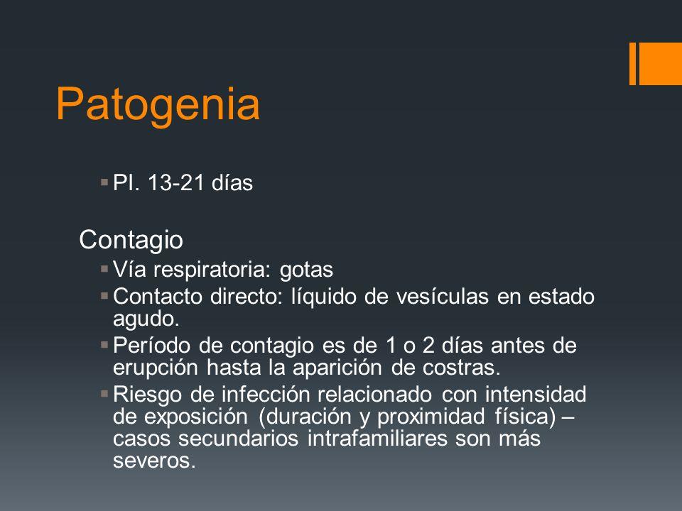 Patogenia PI. 13-21 días Contagio Vía respiratoria: gotas Contacto directo: líquido de vesículas en estado agudo. Período de contagio es de 1 o 2 días