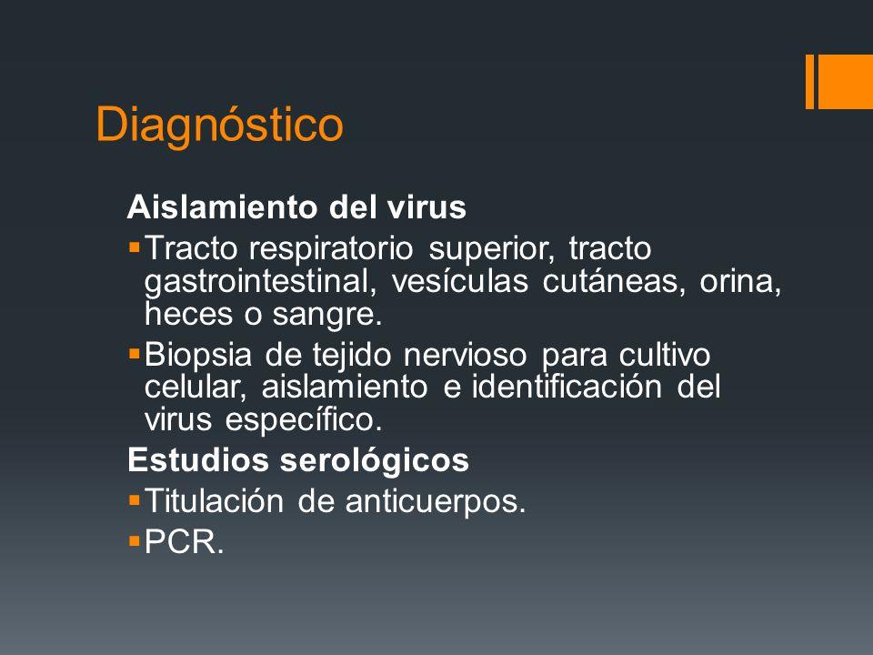 Diagnóstico Aislamiento del virus Tracto respiratorio superior, tracto gastrointestinal, vesículas cutáneas, orina, heces o sangre. Biopsia de tejido