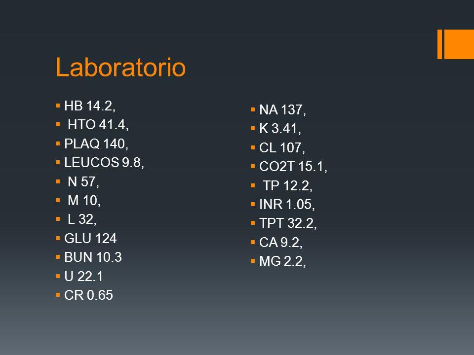 Laboratorio HB 14.2, HTO 41.4, PLAQ 140, LEUCOS 9.8, N 57, M 10, L 32, GLU 124 BUN 10.3 U 22.1 CR 0.65 NA 137, K 3.41, CL 107, CO2T 15.1, TP 12.2, INR