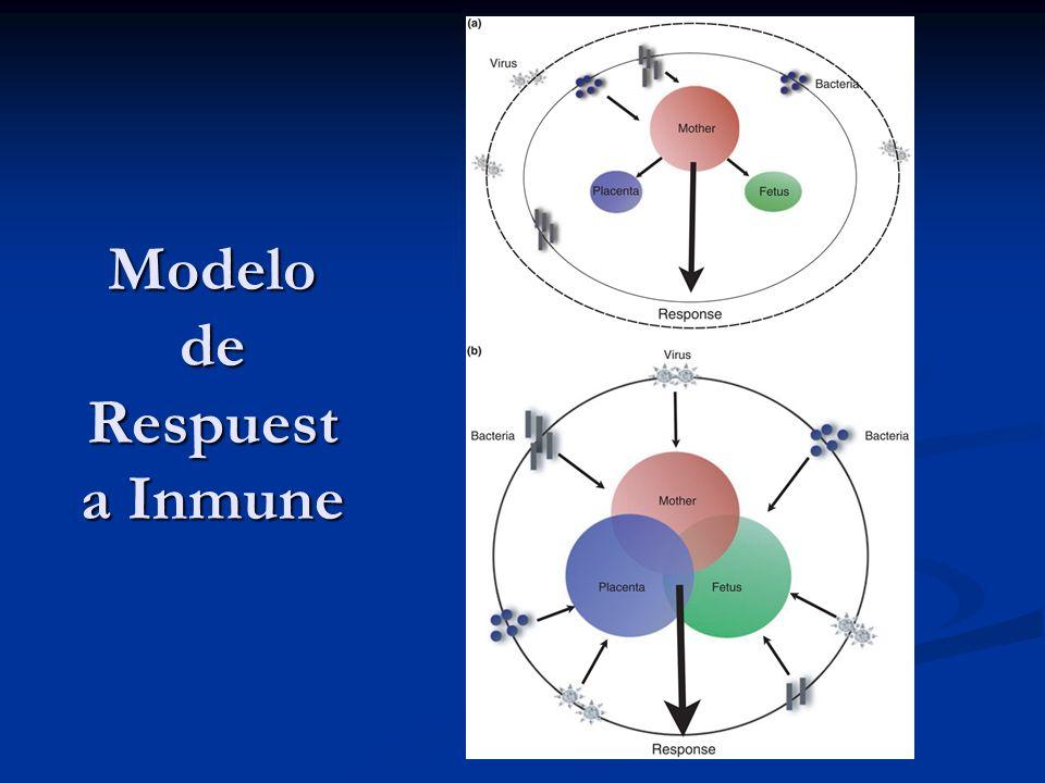 Interacción de los sistemas inmunológicos materno y fetal Ocurre en la unión coriodecidual.