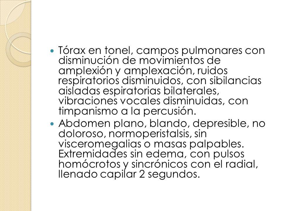 Tórax en tonel, campos pulmonares con disminución de movimientos de amplexión y amplexación, ruidos respiratorios disminuidos, con sibilancias aislada