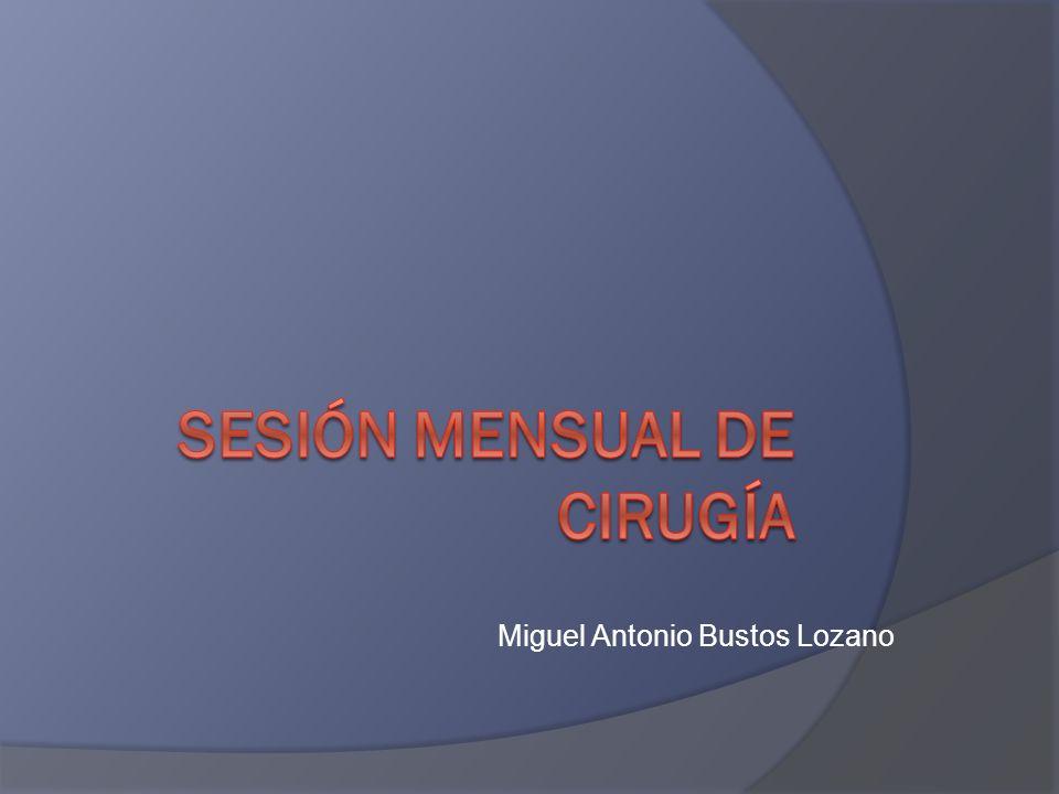 Miguel Antonio Bustos Lozano