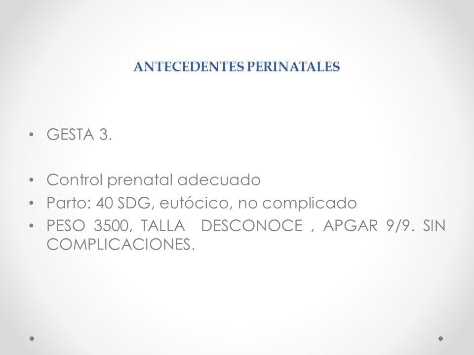 ANTECEDENTES PERINATALES GESTA 3. Control prenatal adecuado Parto: 40 SDG, eutócico, no complicado PESO 3500, TALLA DESCONOCE, APGAR 9/9. SIN COMPLICA