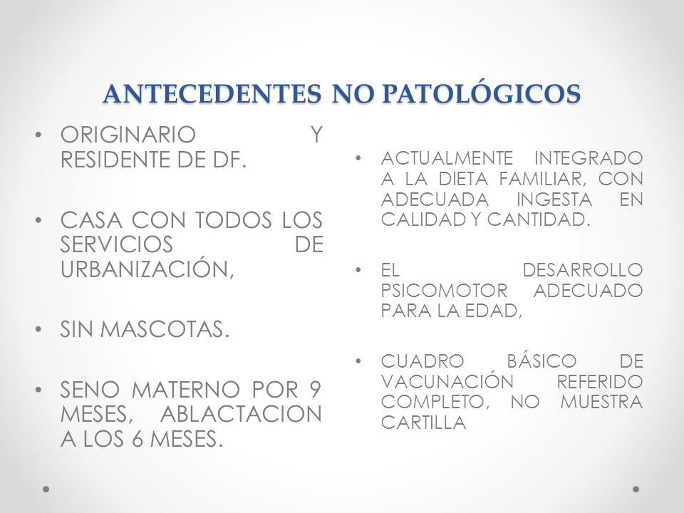 ANTECEDENTES NO PATOLÓGICOS ACTUALMENTE INTEGRADO A LA DIETA FAMILIAR, CON ADECUADA INGESTA EN CALIDAD Y CANTIDAD. EL DESARROLLO PSICOMOTOR ADECUADO P