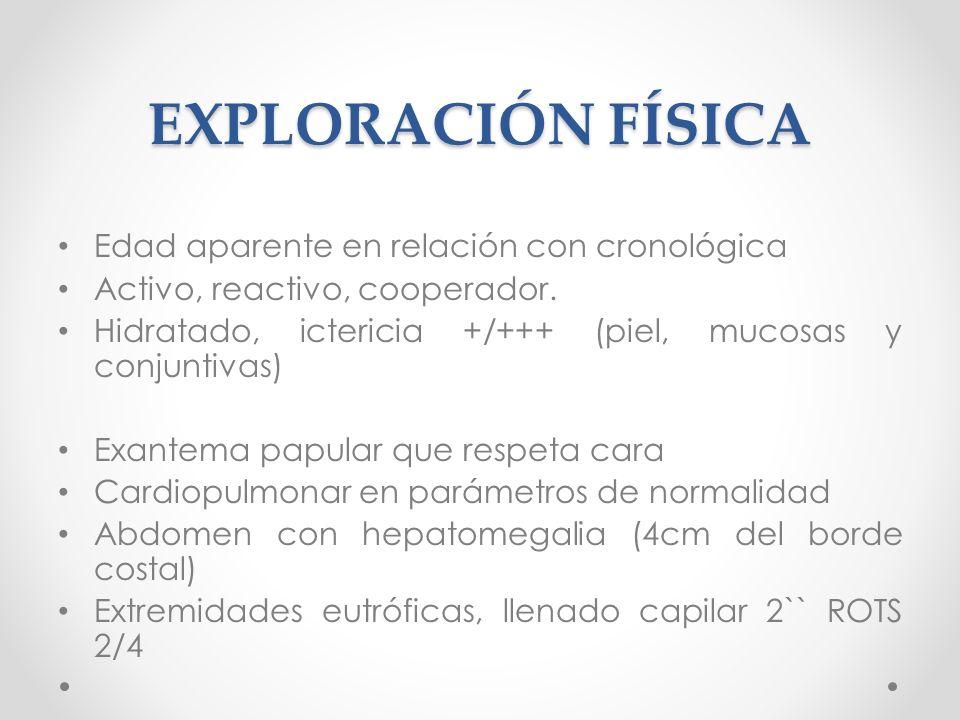 EXPLORACIÓN FÍSICA Edad aparente en relación con cronológica Activo, reactivo, cooperador. Hidratado, ictericia +/+++ (piel, mucosas y conjuntivas) Ex