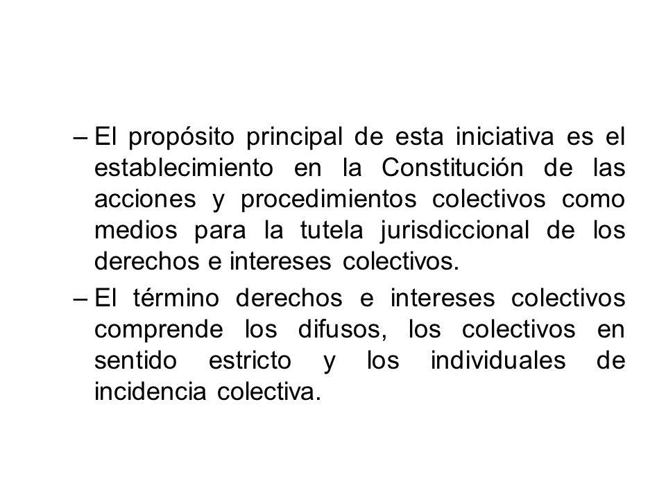 –El propósito principal de esta iniciativa es el establecimiento en la Constitución de las acciones y procedimientos colectivos como medios para la tu