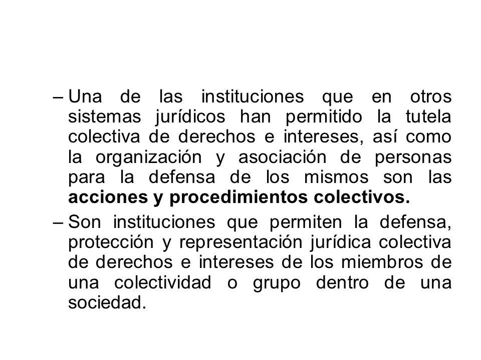 –Una de las instituciones que en otros sistemas jurídicos han permitido la tutela colectiva de derechos e intereses, así como la organización y asocia