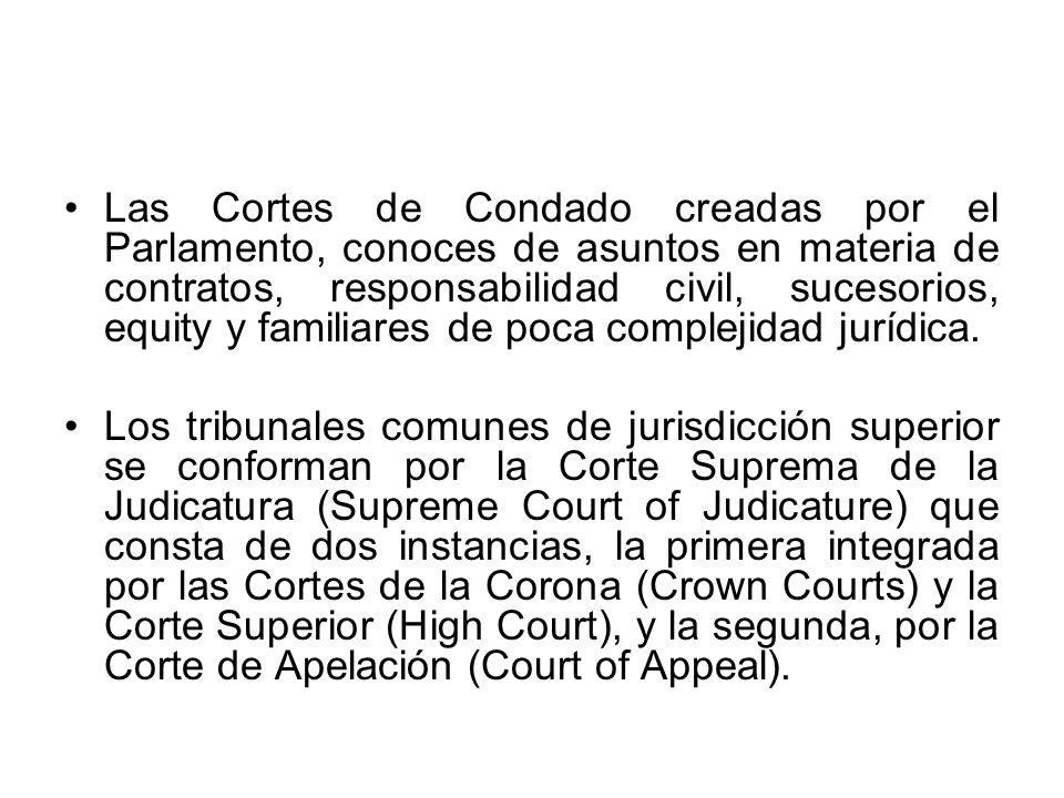 Las Cortes de Condado creadas por el Parlamento, conoces de asuntos en materia de contratos, responsabilidad civil, sucesorios, equity y familiares de
