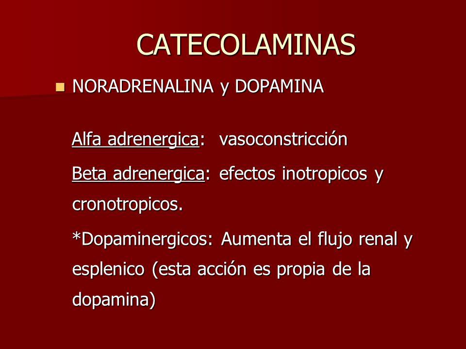 CATECOLAMINAS NORADRENALINA y DOPAMINA NORADRENALINA y DOPAMINA Alfa adrenergica: vasoconstricción Alfa adrenergica: vasoconstricción Beta adrenergica