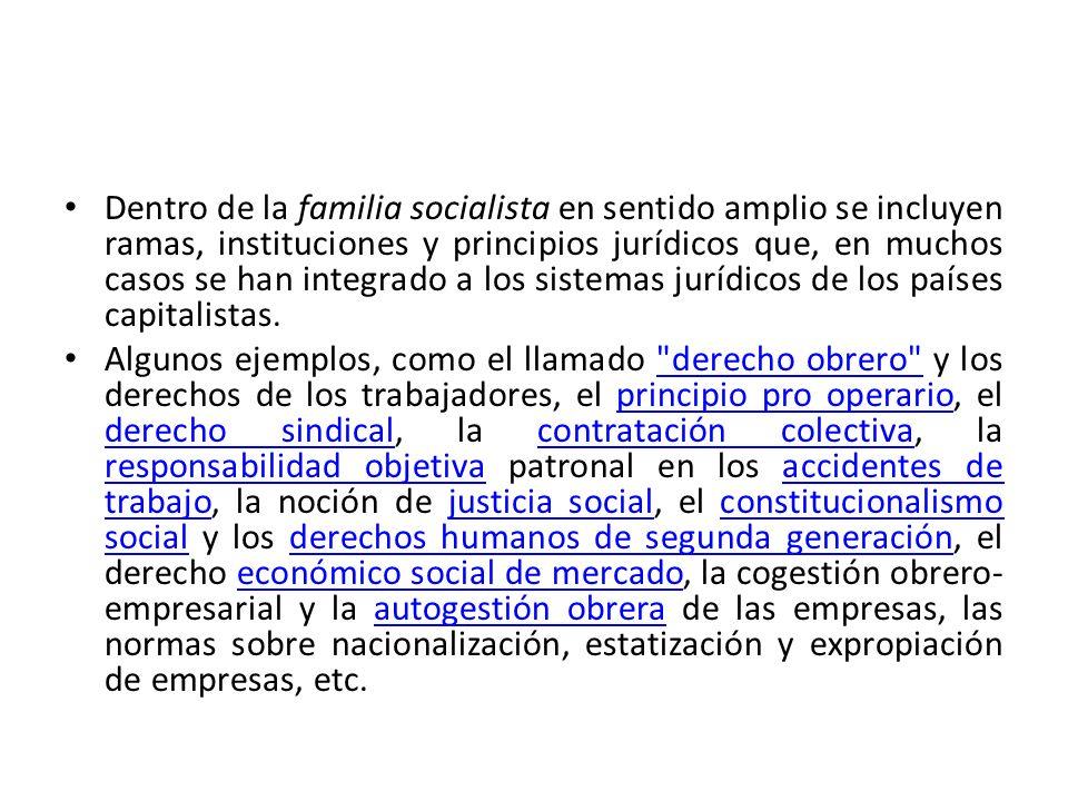 Dentro de la familia socialista en sentido amplio se incluyen ramas, instituciones y principios jurídicos que, en muchos casos se han integrado a los