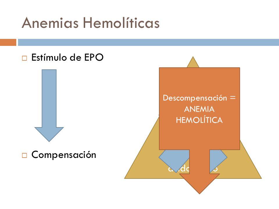 Anemias Hemolíticas Estímulo de EPO Compensación Aumento en requerimientos de Hierro y ácido fólico Descompensación = ANEMIA HEMOLÍTICA