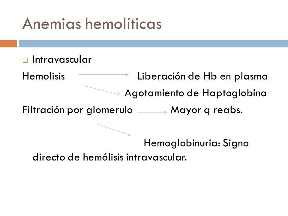 Anemias hemolíticas Intravascular Hemolisis Liberación de Hb en plasma Agotamiento de Haptoglobina Filtración por glomerulo Mayor q reabs. Hemoglobinu
