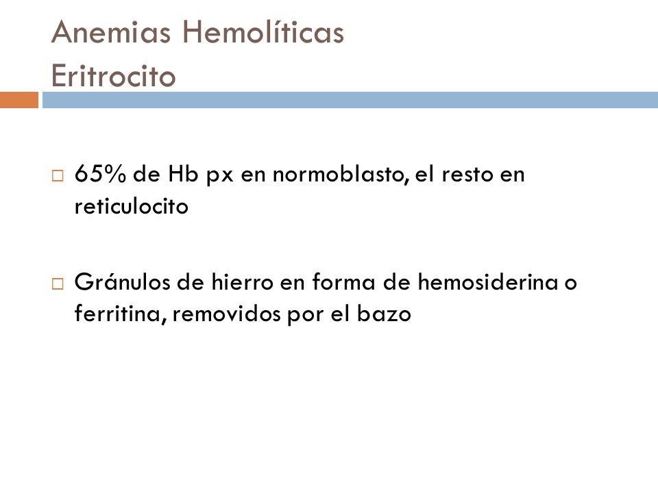 Anemias Hemolíticas Eritrocito 65% de Hb px en normoblasto, el resto en reticulocito Gránulos de hierro en forma de hemosiderina o ferritina, removido