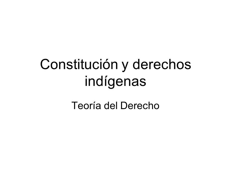 Constitución y derechos indígenas Teoría del Derecho