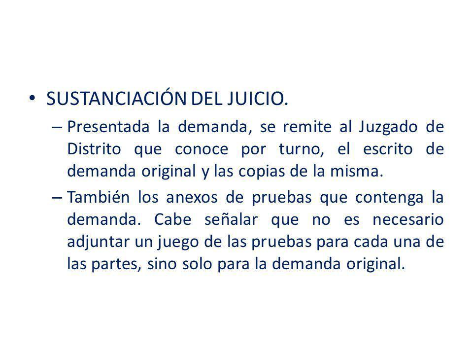 PRUEBAS EN EL JUICIO DE AMPARO.