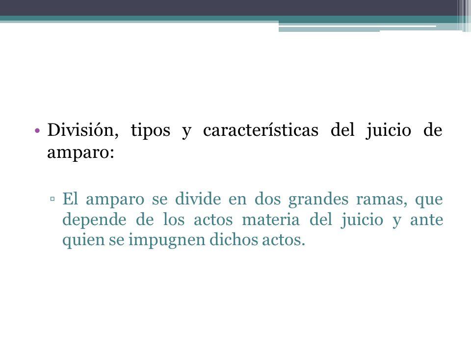 División, tipos y características del juicio de amparo: El amparo se divide en dos grandes ramas, que depende de los actos materia del juicio y ante q