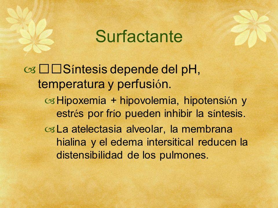 Surfactante S í ntesis depende del pH, temperatura y perfusi ó n. Hipoxemia + hipovolemia, hipotensi ó n y estr é s por fr í o pueden inhibir la s í n