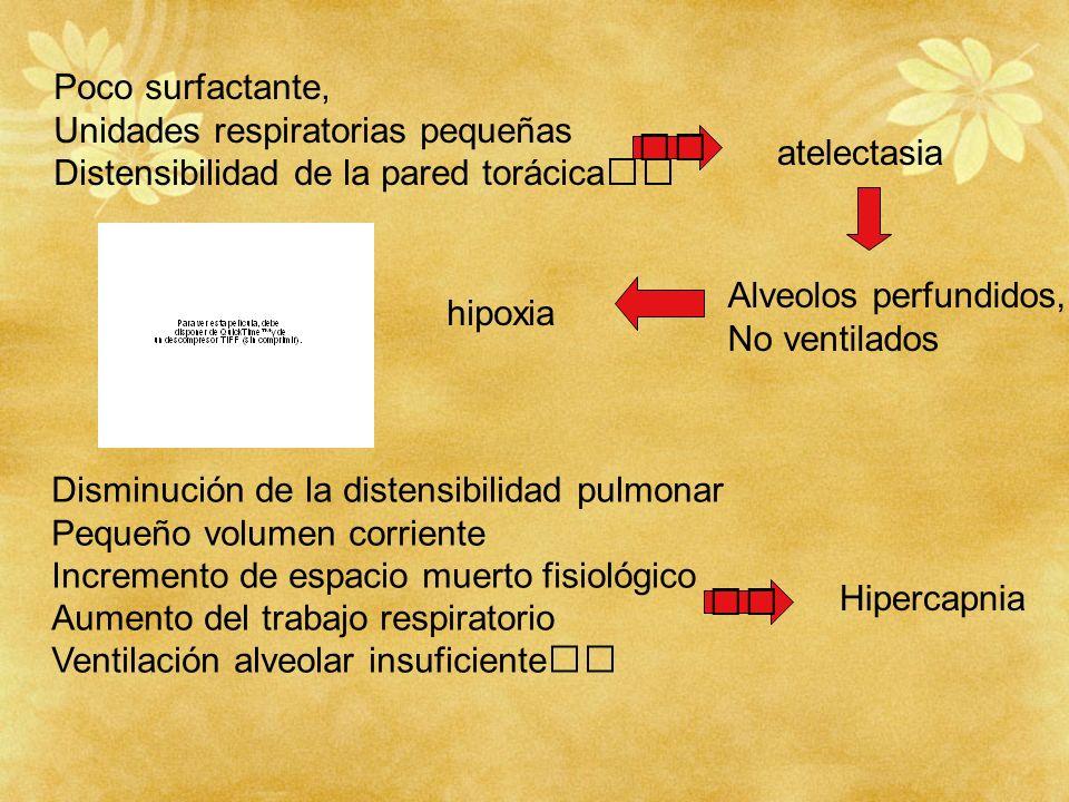 Poco surfactante, Unidades respiratorias pequeñas Distensibilidad de la pared torácica atelectasia Alveolos perfundidos, No ventilados hipoxia Disminu