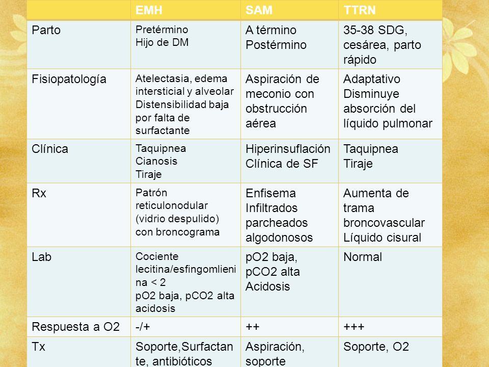 EMHSAMTTRN Parto Pretérmino Hijo de DM A término Postérmino 35-38 SDG, cesárea, parto rápido Fisiopatología Atelectasia, edema intersticial y alveolar