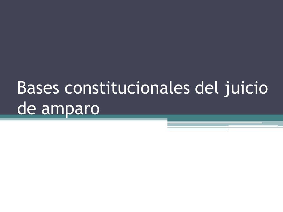 El amparo se revela como un conjunto de actos procesales o procesos que culminan en resolución judicial o sentencia, que constituye su causa final común.