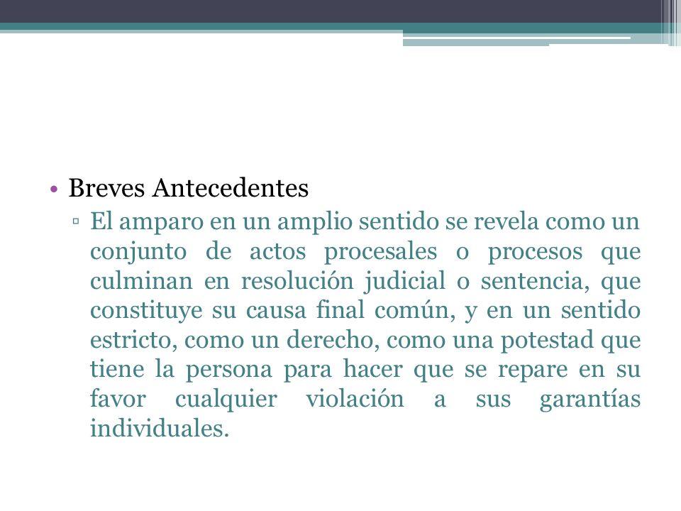 Breves Antecedentes El amparo en un amplio sentido se revela como un conjunto de actos procesales o procesos que culminan en resolución judicial o sen