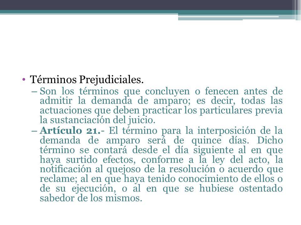 Términos Prejudiciales. – Son los términos que concluyen o fenecen antes de admitir la demanda de amparo; es decir, todas las actuaciones que deben pr