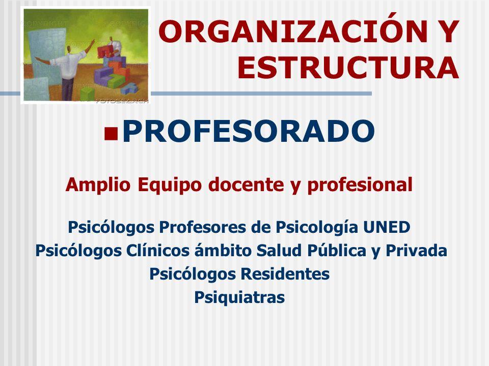 ORGANIZACIÓN Y ESTRUCTURA PROFESORADO Amplio Equipo docente y profesional Psicólogos Profesores de Psicología UNED Psicólogos Clínicos ámbito Salud Pú