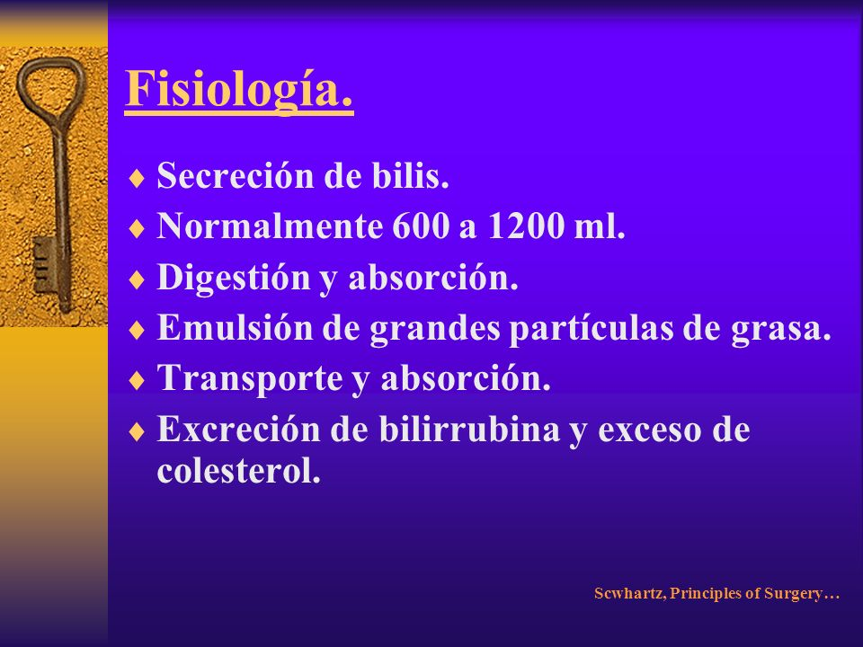 Fisiología. Ochenta y cinco a noventa por ciento. Eritrocitos senescentes. Producción diaria: 3.6 mg/kg. Scwhartz, Principles of Surgery…