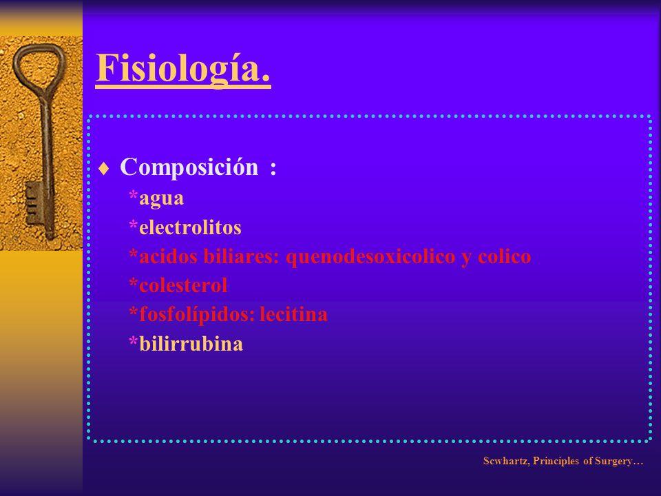 Fisiología. Recirculan 18 veces. 2.5 gm. Diarios. Scwhartz, Principles of Surgery…