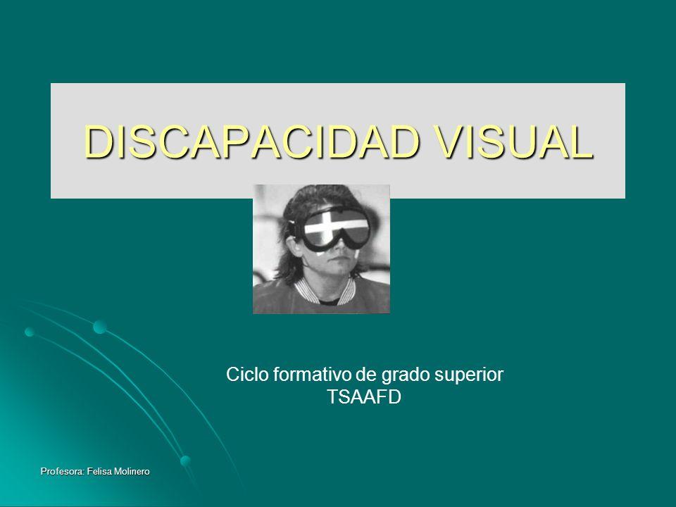 Profesora: Felisa Molinero DISCAPACIDAD VISUAL Ciclo formativo de grado superior TSAAFD
