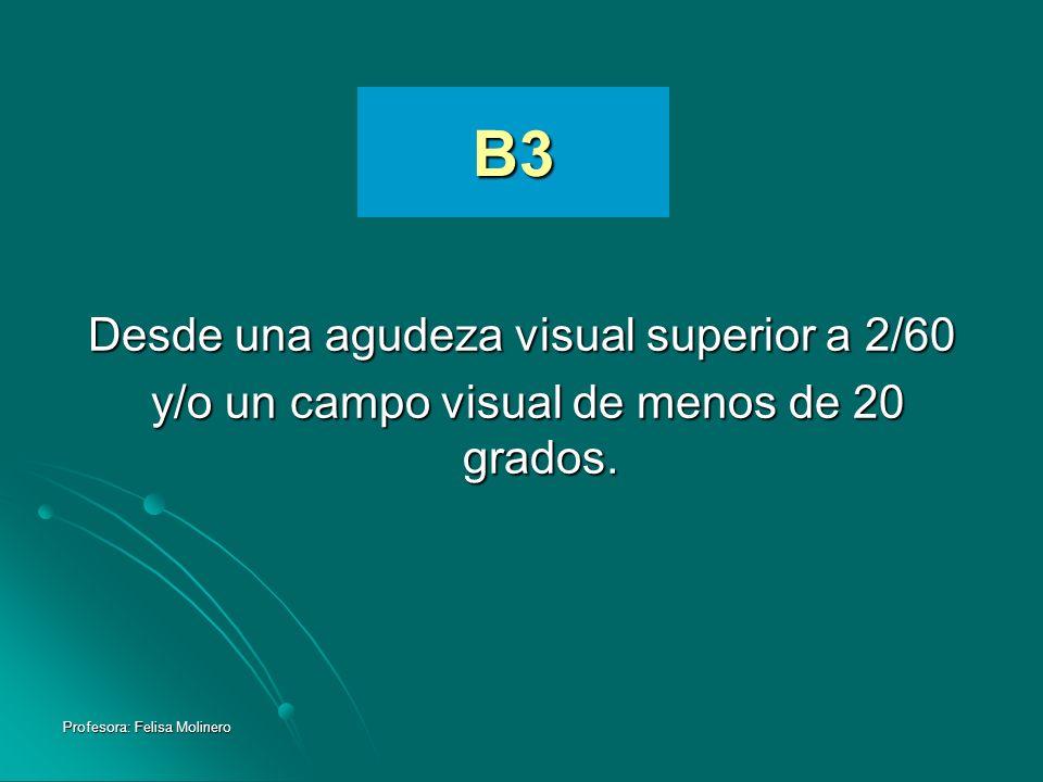 Profesora: Felisa Molinero B3 Desde una agudeza visual superior a 2/60 y/o un campo visual de menos de 20 grados. y/o un campo visual de menos de 20 g