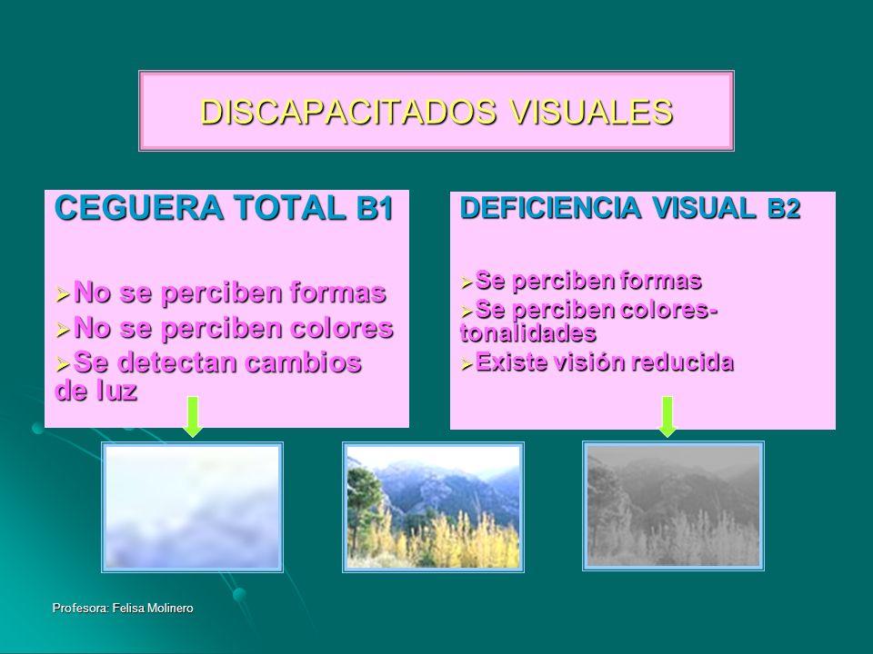Profesora: Felisa Molinero DISCAPACITADOS VISUALES CEGUERA TOTAL B1 No se perciben formas No se perciben formas No se perciben colores No se perciben