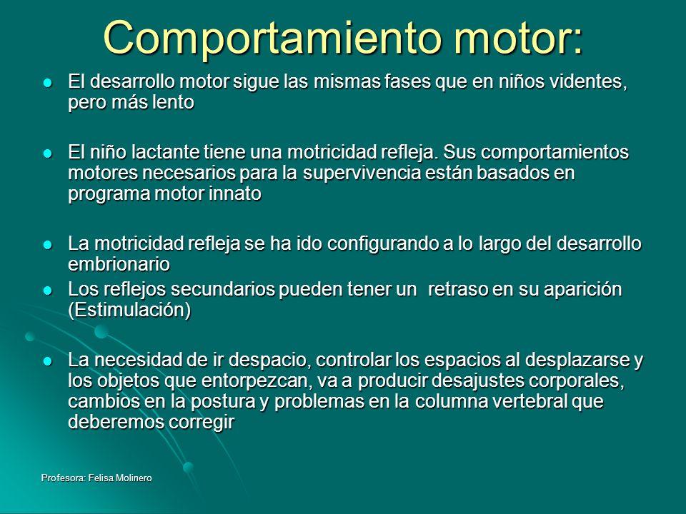 Profesora: Felisa Molinero Comportamiento motor: El desarrollo motor sigue las mismas fases que en niños videntes, pero más lento El desarrollo motor