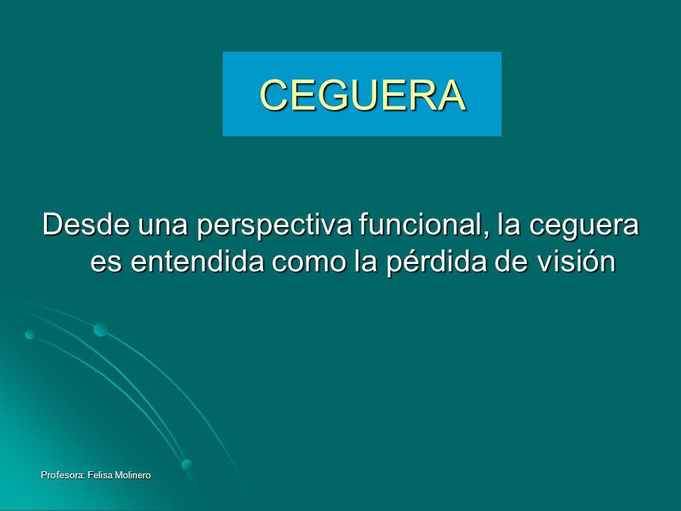 Profesora: Felisa Molinero CEGUERA Desde una perspectiva funcional, la ceguera es entendida como la pérdida de visión