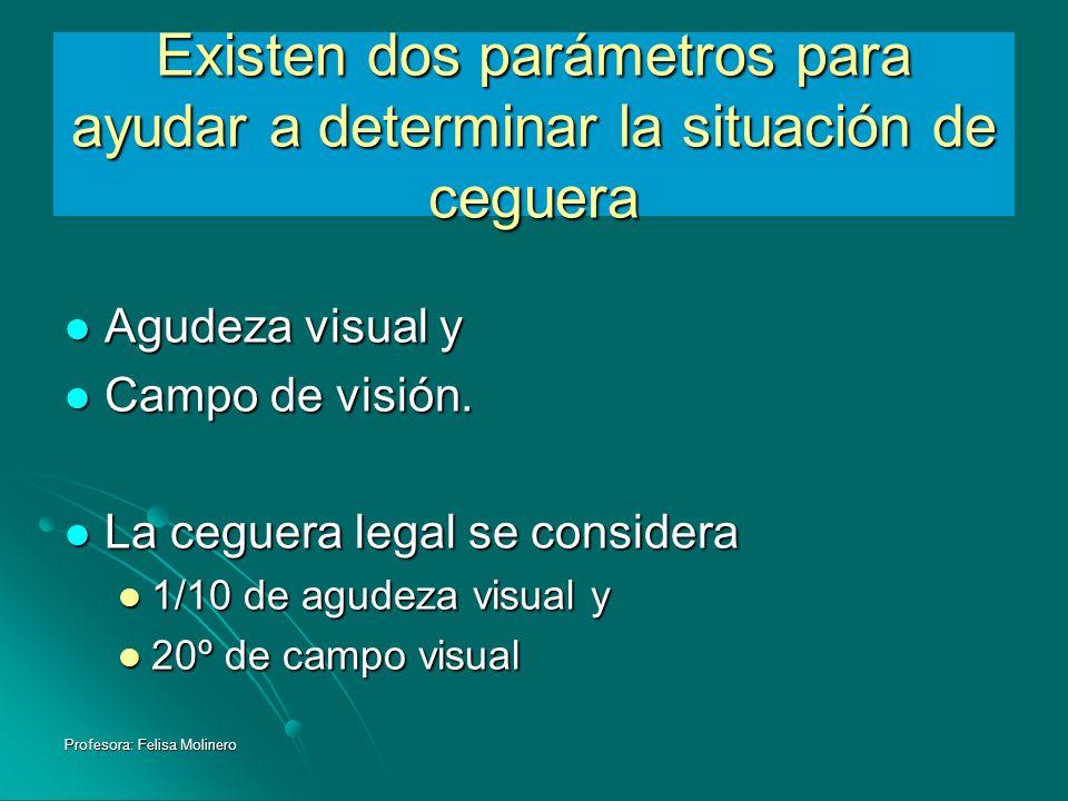 Profesora: Felisa Molinero Existen dos parámetros para ayudar a determinar la situación de ceguera Agudeza visual y Agudeza visual y Campo de visión.
