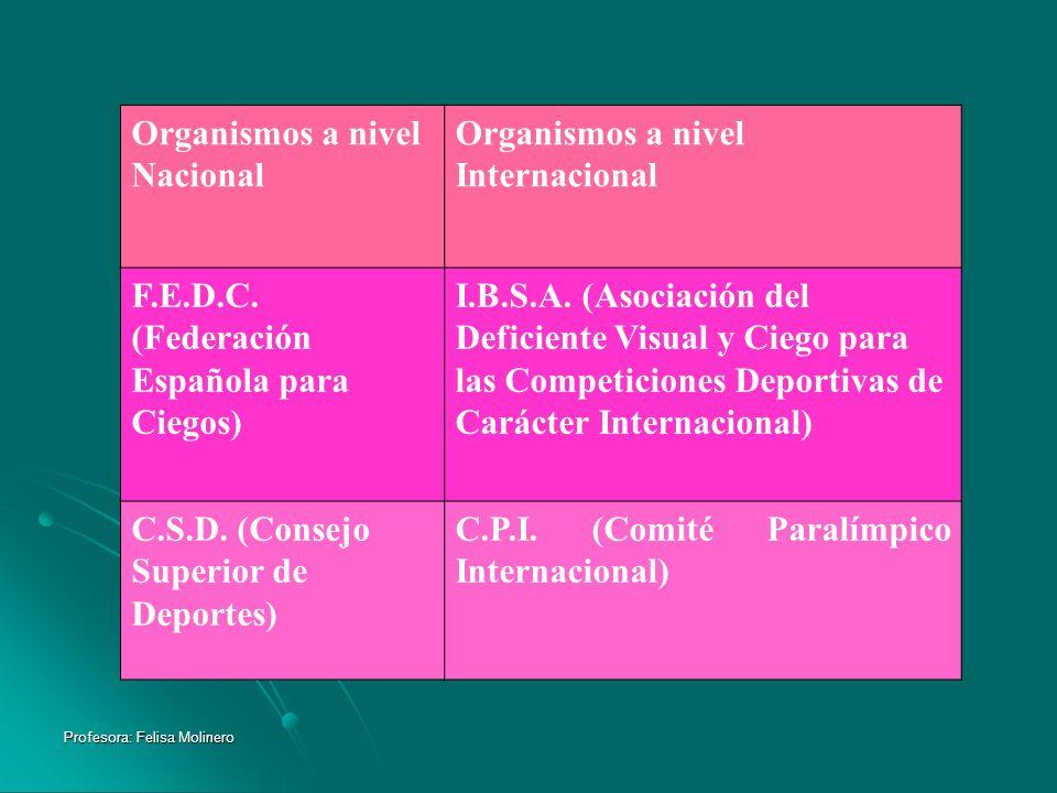 Profesora: Felisa Molinero Organismos a nivel Nacional Organismos a nivel Internacional F.E.D.C. (Federación Española para Ciegos) I.B.S.A. (Asociació